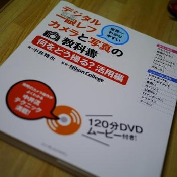 P1020195.jpg
